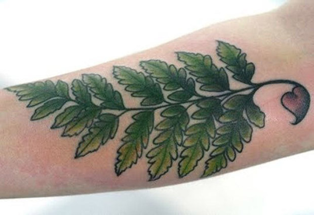 followthecolours leaf tattoo 16 #tattoofriday   Folhas/Leaf Tattoos