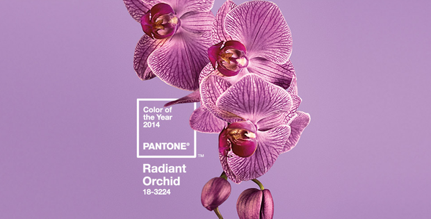 follow the colours pantone radiant orchid 2014 01 Pantone revela a cor do ano de 2014: Radiant Orchid