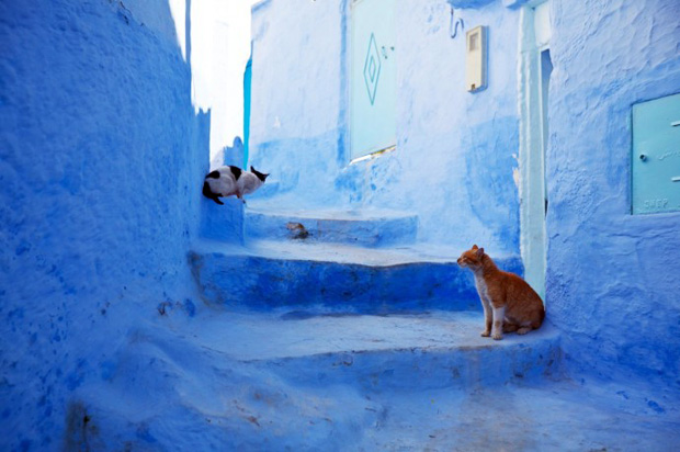 follow-the-colours-travel-chefchaouen-morocco-06