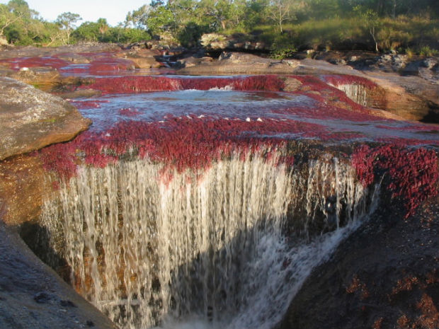 follow-the-colours-cano-cristales-colombia-04