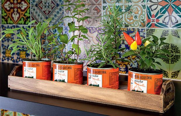 ideias de como fazer uma mini horta para a sua casa  Follow the