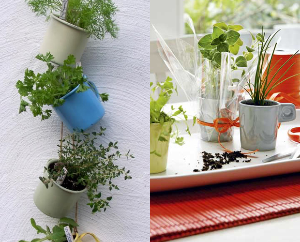 follow-the-colours-mini-horta-cozinha-caneca-02