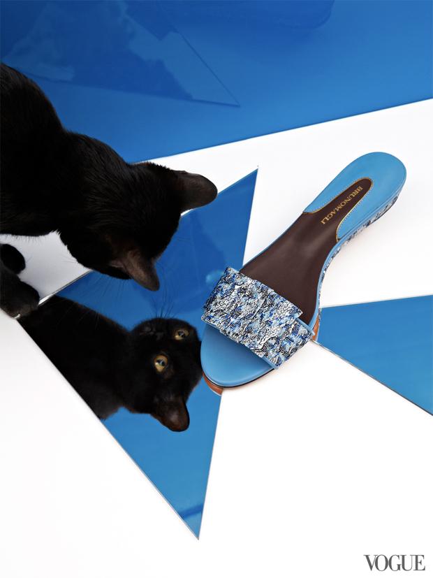 gatinhos-e-sapatos-vogue-06