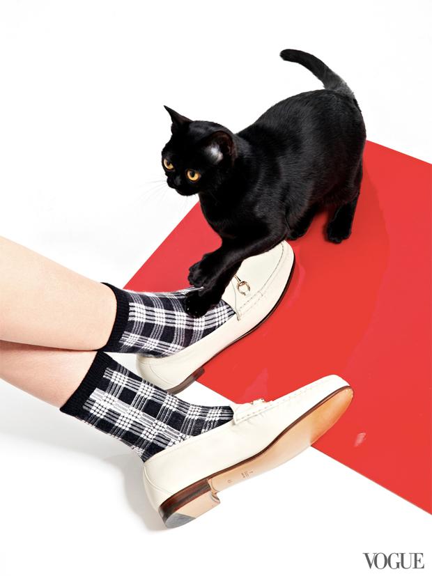 gatinhos-e-sapatos-vogue-10