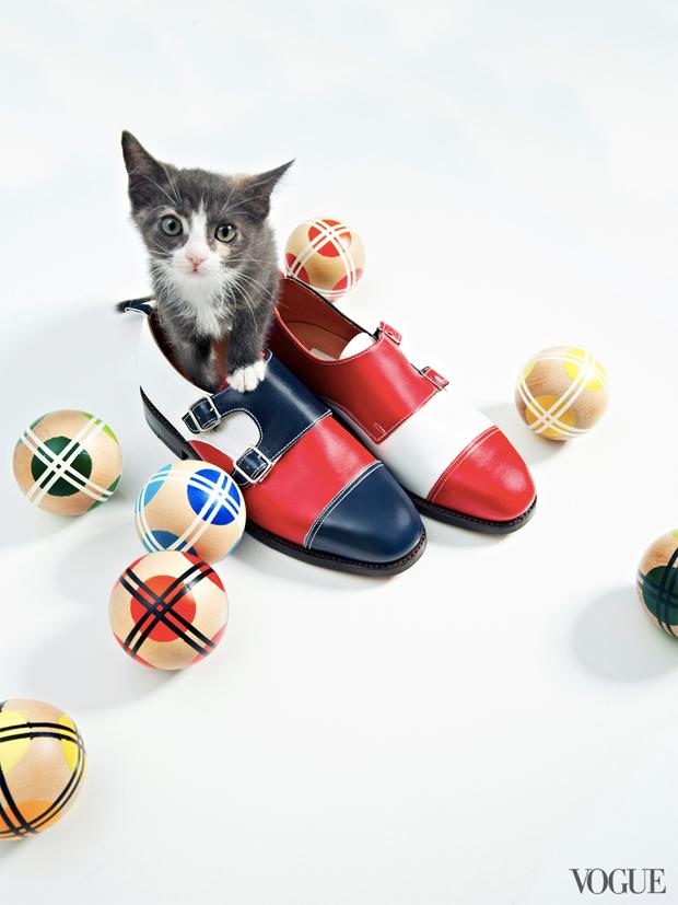 gatinhos-e-sapatos-vogue-11