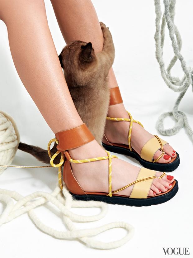 gatinhos-e-sapatos-vogue-12