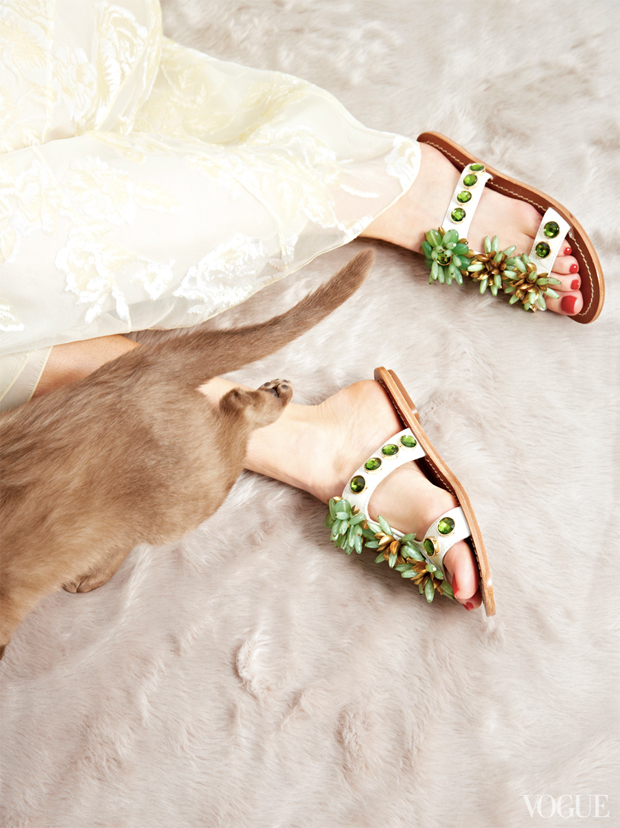 gatinhos-e-sapatos-vogue-21