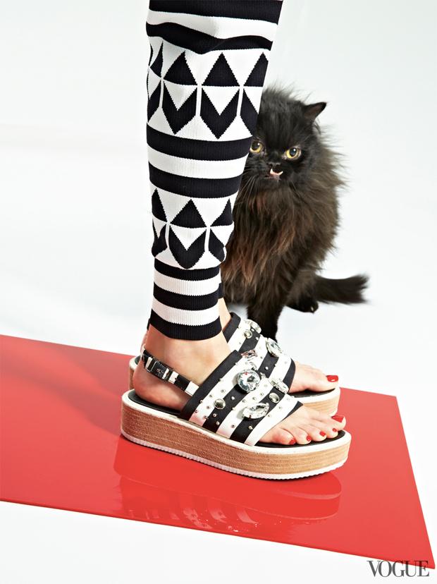 gatinhos-e-sapatos-vogue-26