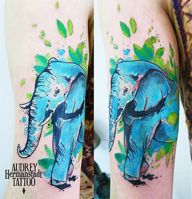 tattoo aquarela Audrey Hermanstadt elefante