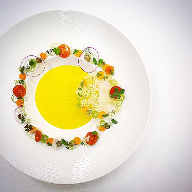 The art of plating 16