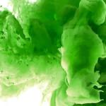 Verde: 50 curiosidades interessantíssimas que você não sabia sobre a cor