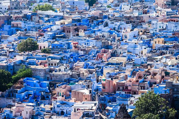 azul Jodhpur
