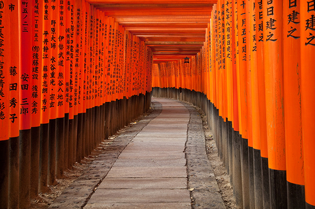 Shutterstock significado laranja china