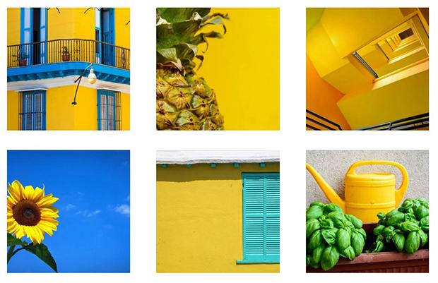 como escolher cor perfeita para sua marca amarelo