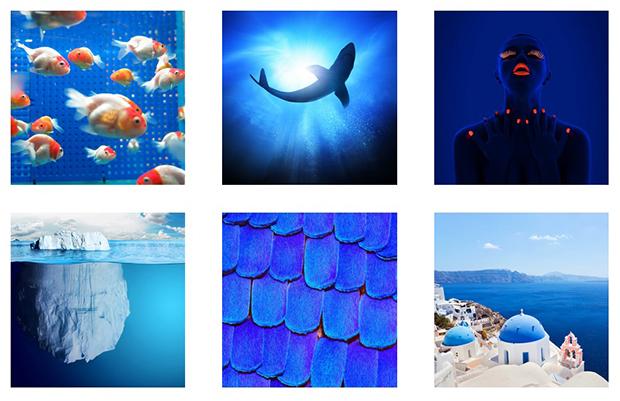 como escolher cor perfeita para sua marca azul