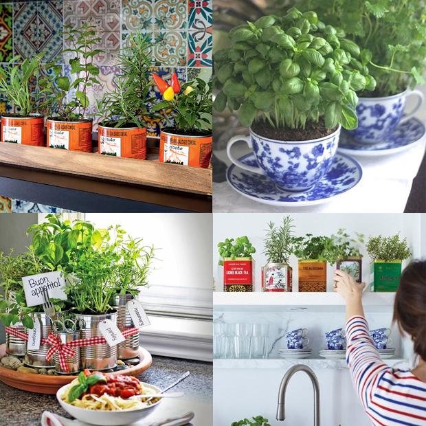 dicas cozinha mais colorida plantas verde mini horta