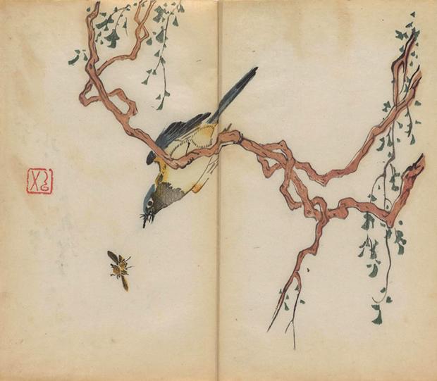 primeiro livro impresso colorido do mundo