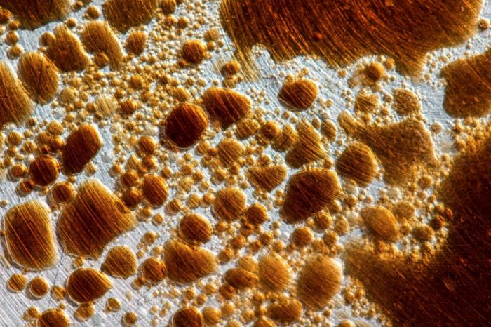 bubbles - oleo vegetal, vinagre balsâmico