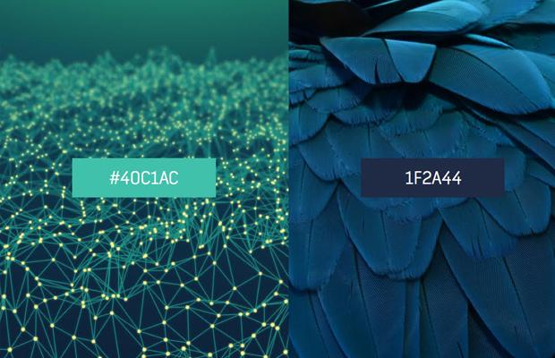 Combinaram dados de pixel com downloads de imagem, para transformar essas informações nas últimas tendências de cores no design em 2015.