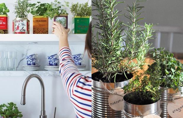 mini horta cozinha temperos