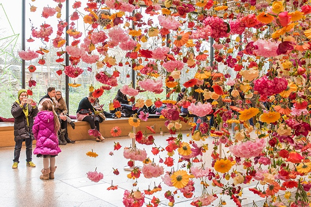 follow-the-colours-floral-installation (1)