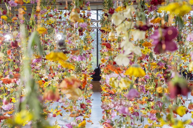 follow-the-colours-floral-installation (3)