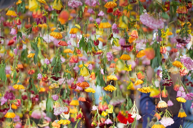 follow-the-colours-floral-installation (6)