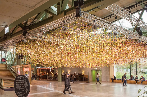 follow-the-colours-floral-installation (9)