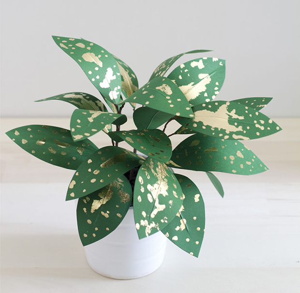 Plants-Made-From-Paper-571f28b03b85a__880