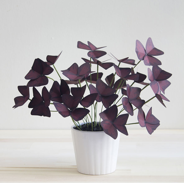 Plants-Made-From-Paper-571f28b43bd9a__880