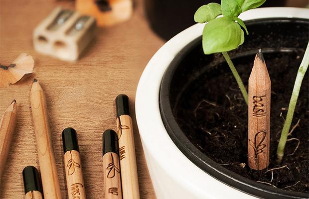 capa-follow-the-colours-sprout-pencil-lapis-com-sementes-ecodesign-
