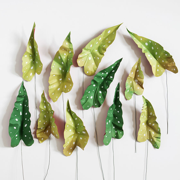 corrie_beth_hogg_paper_plants_begonia_leaves2-571e47400beb4__880