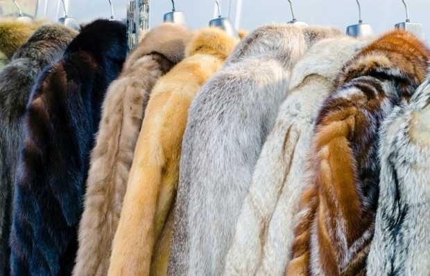 peles de animais moda