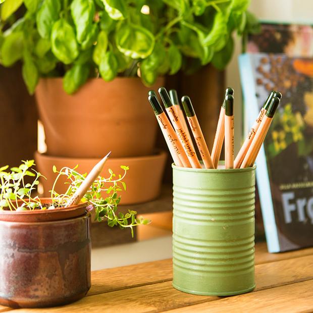 follow-the-colours-sprout-pencil-lapis-com-sementes-ecodesign-06