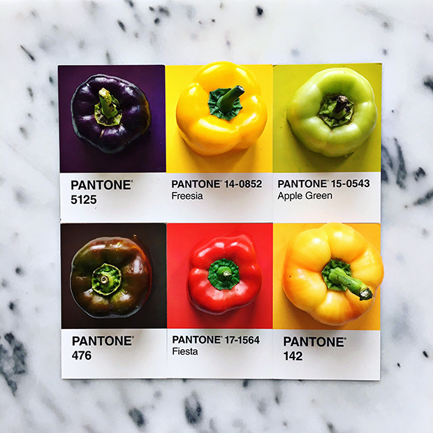 follow-the-colours-pantone-posts-lucy-Litman-08