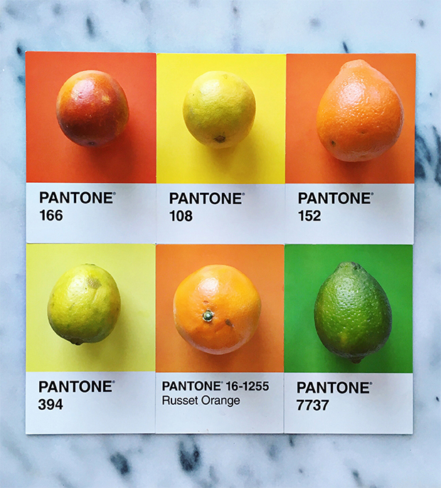 follow-the-colours-pantone-posts-lucy-Litman-09