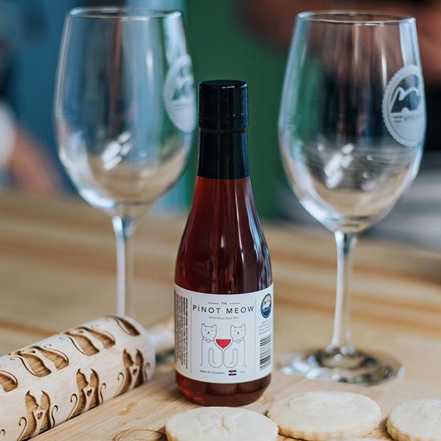 Empresa americana cria vinhos para gatos à base de ervas que ajudam a aliviar o estresse. Nunca mais beba sozinho!