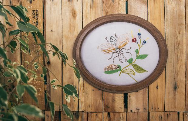 capa-mirabilia-bordados-botanicos