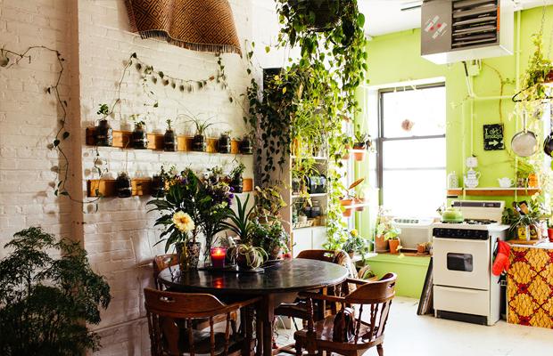 follow-the-colours-apartamento-plantas-Summer-Rayne-Oakes-04