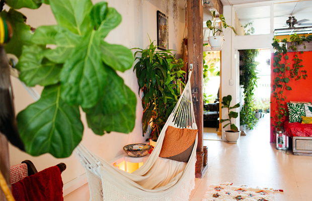 follow-the-colours-apartamento-plantas-Summer-Rayne-Oakes-06