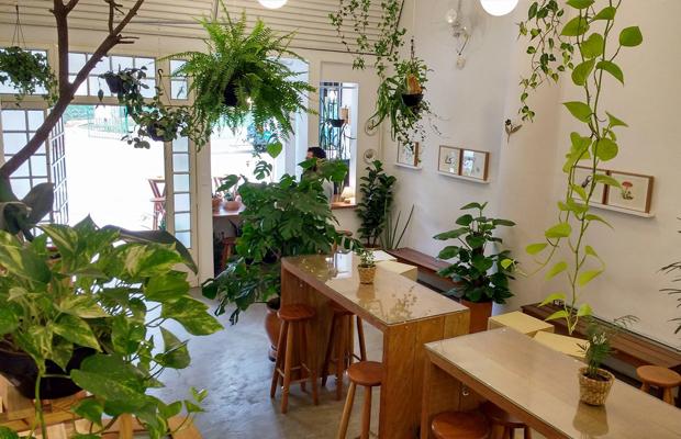 ftc-cafeterias-sao-paulo-jardin-02