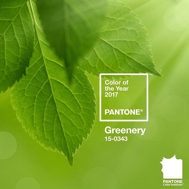 ftc-cor-do-ano-2017-pantone-greenery-01