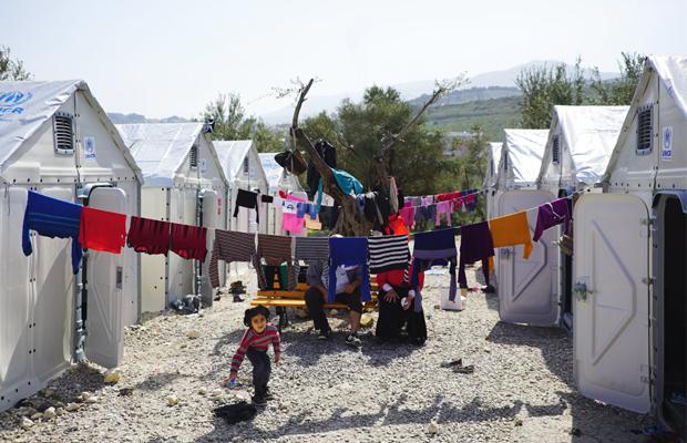 better shelter abrigo refugiados
