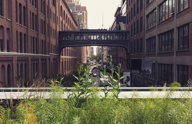 High Line Nova York parque