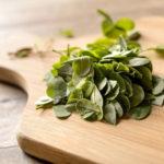 PANCs plantas alimentícias não convencionais