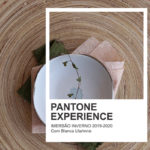 Pantone Experience